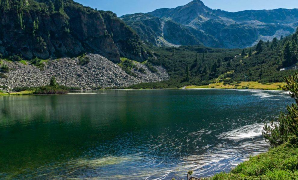Bulgarije Natuur Meer